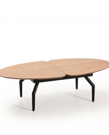 coffee table Casandra Hamilton 13925 IZ